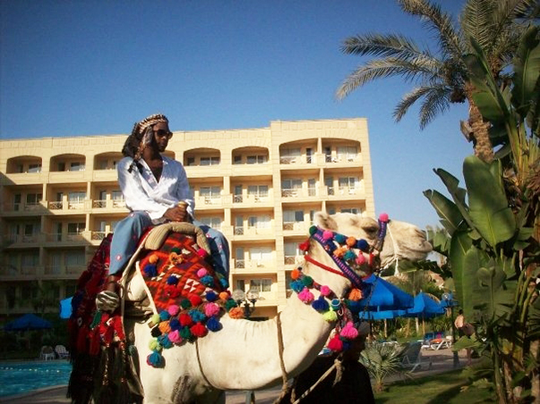 M-1-on-camel-in-Egypt-0709-courtesy-M-1-web1, M1 of dead prez: 24 hours in Gaza, World News & Views