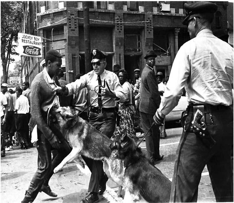 Police-dogs-attack-civil-rights-demonstrator, Haiti help or Haiti hoodwink?, World News & Views