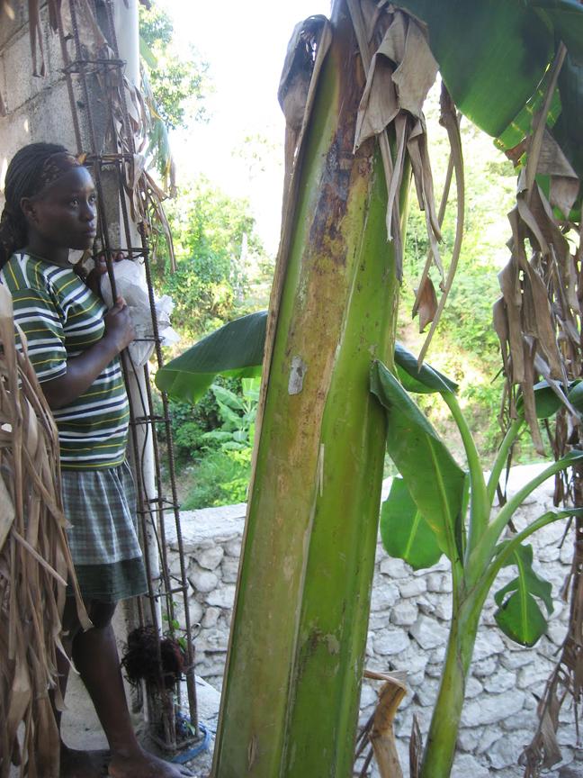 Haiti-earthquake-student-new-Sopudep-school-0410-by-Wanda, Haiti Awareness Day and Celebration Tuesday, May 18, Culture Currents